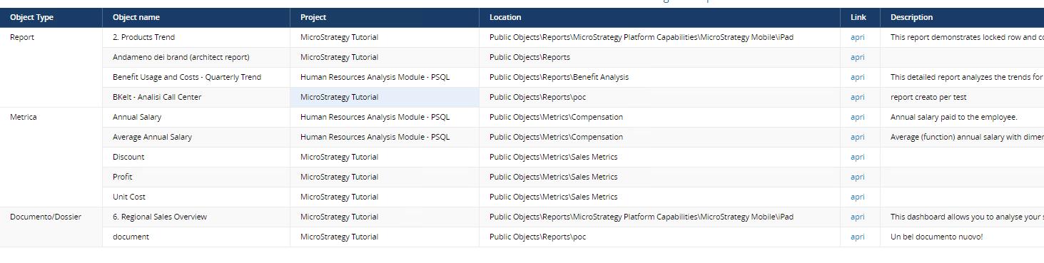 Interfaccia esito di ricerca di Microstrategy Category Manager